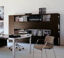 AC EXECUTIVE - Librerie ACE1